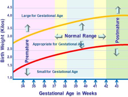 Variations in Fetal Growth