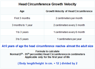 Head Circumference Growth Velocity