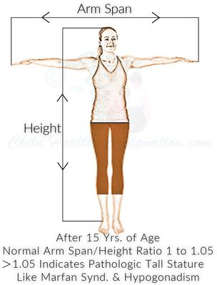 Arm Span To Height Ratio