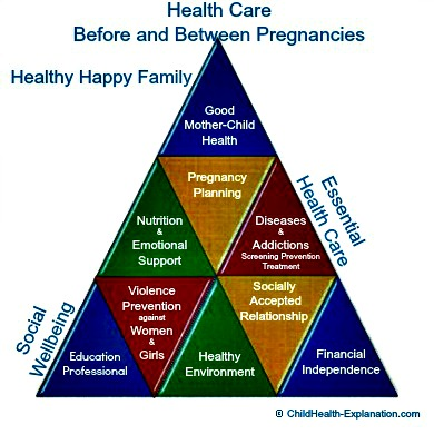 Facets of Preconception Counseling