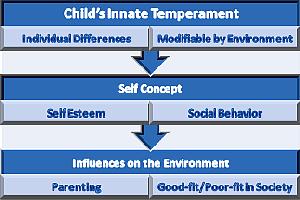 Influences of Innate Temperament