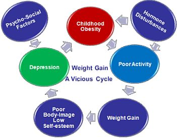 Weight Gain Cycle
