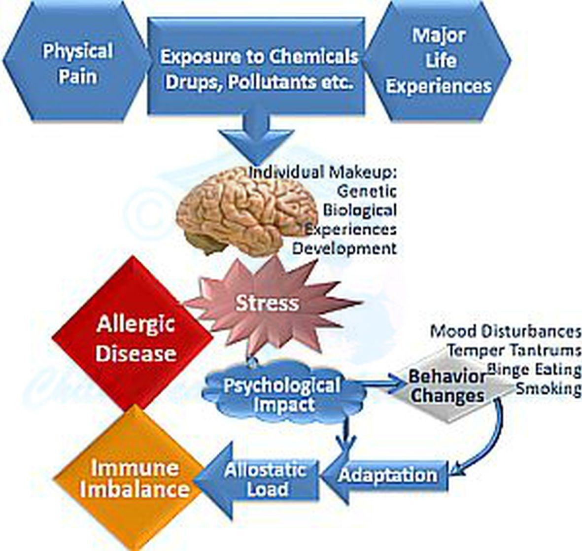 Stress Impairs Immune Balance