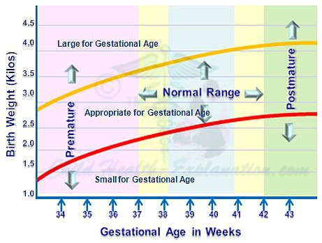 Newborn Growth Pattern Varies With the Weight of Baby at Birth