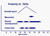 Growth Spurt of Puberty in Girls