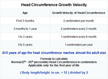 Head Circumference Growth Velocity