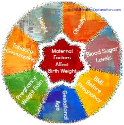Maternal Factors That Influence Birth Weight Of The Baby