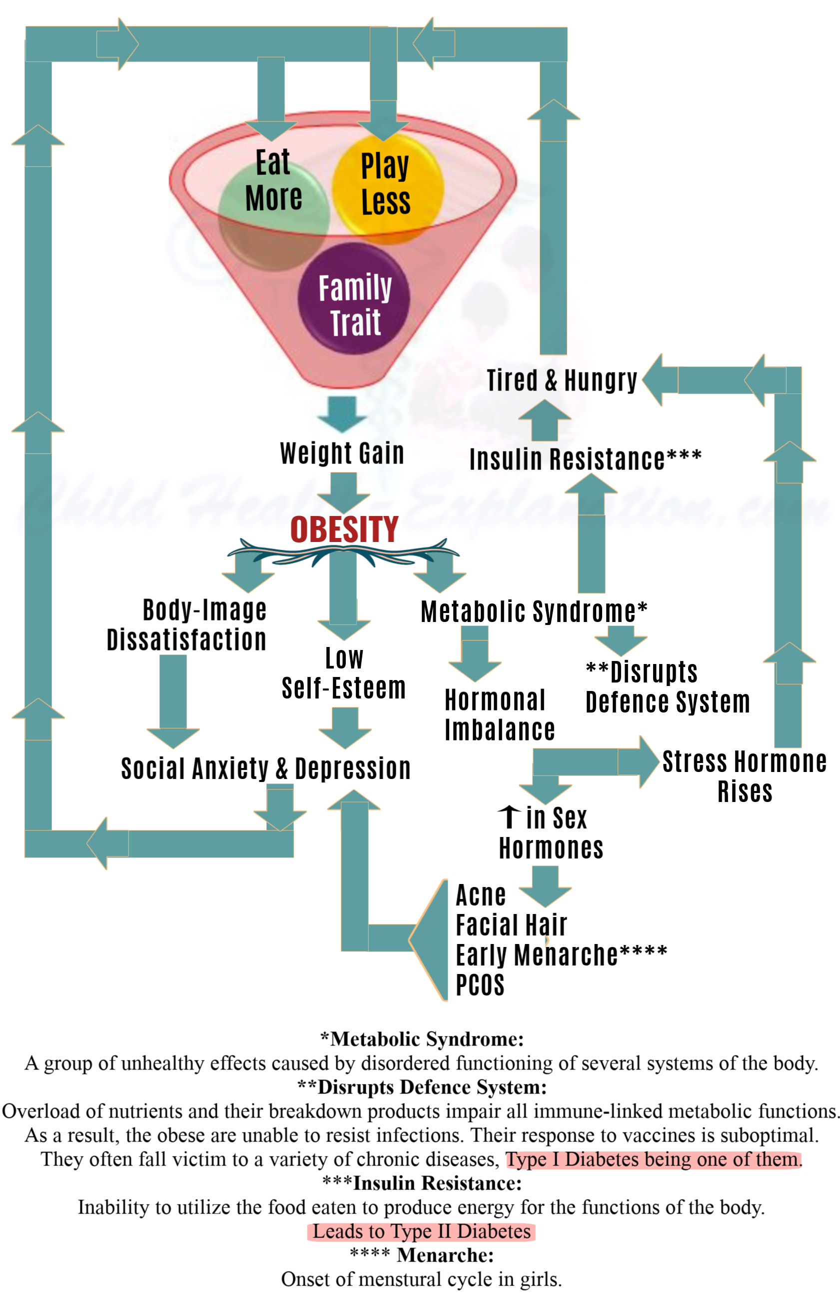 Understanding The Obesity Trap And Its Effects on Well-Being